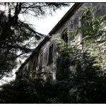 Ospedale psychiatrico-12